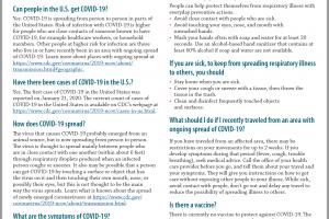 What is Coronavirus (COVID-19)